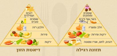 ירקות הם העיקר. פירמידת המזון בדיאטת הזון לעומת הרגילה (צילום: shutterstock)
