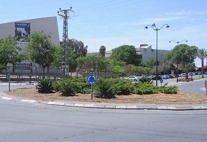 מרחק נסיעה של כמה דקות לכביש 40 - שמוביל לחוצה ישראל (צילום: הרצל יוסף) (צילום: הרצל יוסף)