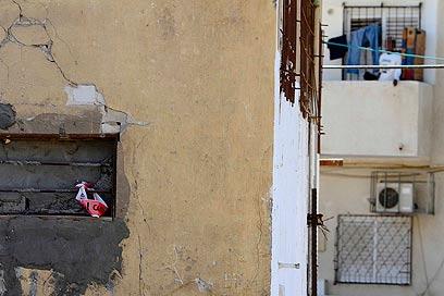 אונס בחצר האחורית (צילום: אמיר לוי) (צילום: אמיר לוי)