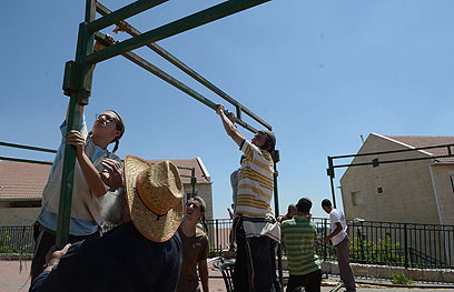 מקימים סוכה ליד בתי שכונת האולפנה בבית אל (צילום: אוריה תדמור) (צילום: אוריה תדמור)