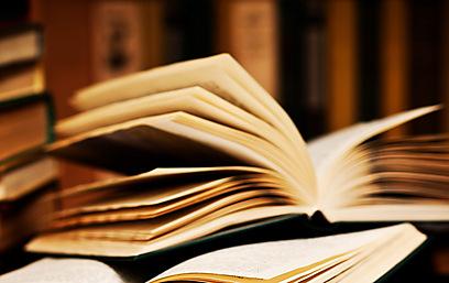 מתייחסים לספרים כמו לפירות בשוק. אילוסטרציה    (צילום: shutterstock) (צילום: shutterstock)