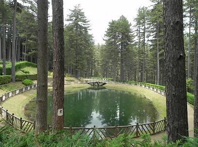 אופציה טובה למי שמתחשק קצת טבע. האגם בפארק לאומי סילה   (צילום: זיו ריינשטיין)