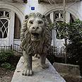 פסל האריה בימים טובים יותר צילום: הניה מיכלסון