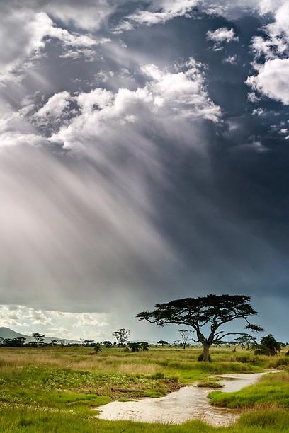 שימוש בפילטרים הנכונים משדרג לגמרי את תמונות הנוף שלכם. צולם בסרנגטי עם פילטר ND  מדורג + פולרייזר (צילום: תומר רצאבי)