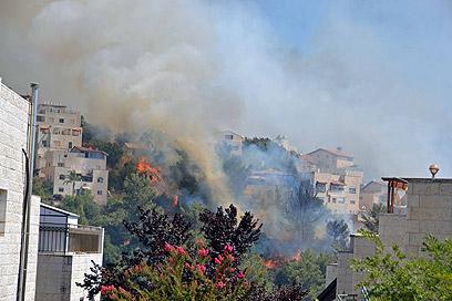 """האש ליד הבתים בשכונת מעוז ציון (צילום:  ד""""ר מיכה שמיר  )"""