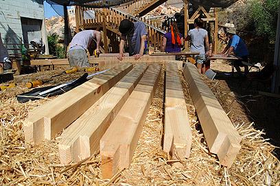 רכשו כלים לעתיד והפכו את בית הספר ליפה יותר (צילום: דורון הבסי) (צילום: דורון הבסי)