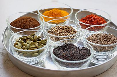 הכל בתבלינים - הכנה לאוכל הודי (צילום: מיכל וקסמן) (צילום: מיכל וקסמן)