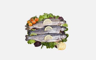 המלצת איגודי הבריאות לאכול 2 מנות דג בשבוע (צילום: shutterstock) (צילום: shutterstock)