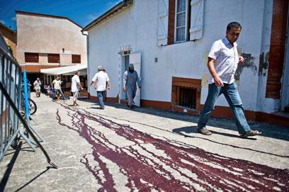 דם ליד המסגד שבו נתלו ראשי החזיר (צילום: רויטרס) (צילום: רויטרס)