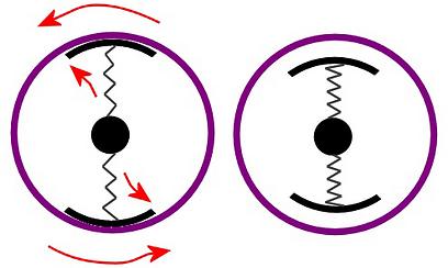 המצמד במנוחה (מימין) ובתנועה, שרטוט סכמטי ופשטני להחריד  (איור: עידו גנדל) (איור: עידו גנדל)