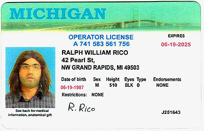 Fake driver's license (Photo: AFP)