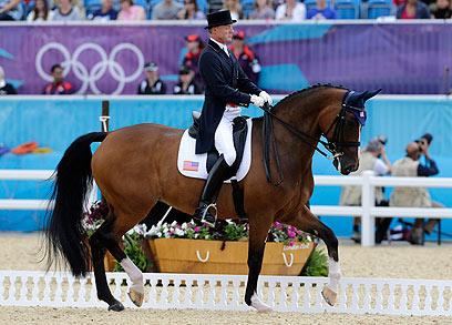 רפלקה, סוס הרכיבה האמנותית של רומני, באולימפיאדת לונדון 2012 (צילום: EPA) (צילום: EPA)