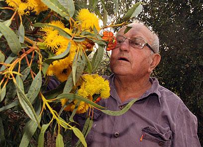 התאהב בייצור דבש בבית הספר החלקאי בנהלל. דוד גרטל (צילום: רועי עידן)