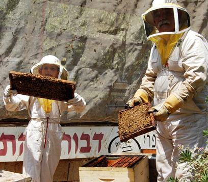 """""""מקצוע מרתק"""", דורות של ייצור דבש. משפחת בן זאב  (צילום: אייל בר-טוב)"""