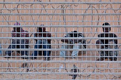 """מעבר לגדר. """"גאה שהיינו הומנים. נתנו מים ואוכל"""" (צילום: רויטרס) (צילום: רויטרס)"""