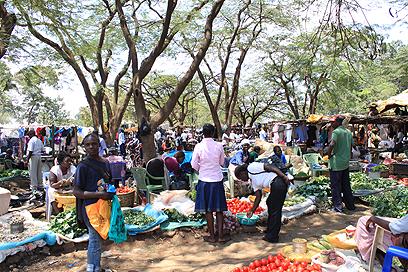השוק בקיסומו (צילום: ניר (שוקו) כהן, אלי סטרול) (צילום: ניר (שוקו) כהן, אלי סטרול)