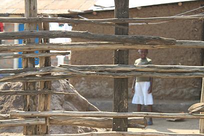 סלאמס בקיסומו (צילום: ניר (שוקו) כהן, אלי סטרול) (צילום: ניר (שוקו) כהן, אלי סטרול)