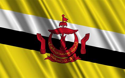 דגל ברוניי (צילום: shutterstock) (צילום: shutterstock)