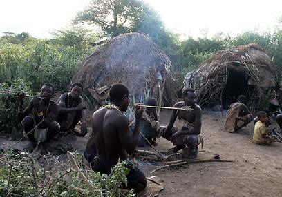 הסוכות נבנות מענפים פשוטים ושאריות עץ. שבט הדזבה בטנזניה  (צילום: גלעד פלש)