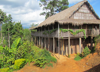 בקתה בפפואה ניו גיני  (צילום: רמי ירדן )
