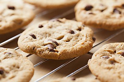 חוזרות גם הן - עוגיות שוקולד צ'יפס (צילום: shutterstock) (צילום: shutterstock)