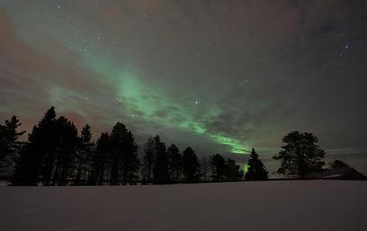 ביער בלפלנד בשמיים מלאי כוכבים, הרחק מאורות העיר (צילום: עינב  ברזני) (צילום: עינב  ברזני)