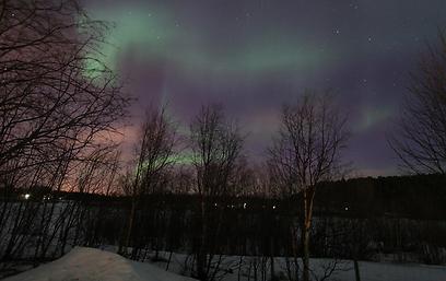 אורות מרקדים בשמיים (צילום: עינב  ברזני) (צילום: עינב  ברזני)