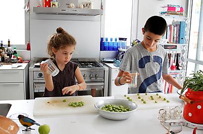 הילדים יכולים לעזור - דופקים זיתים (צילום: מיכל וקסמן ) (צילום: מיכל וקסמן )