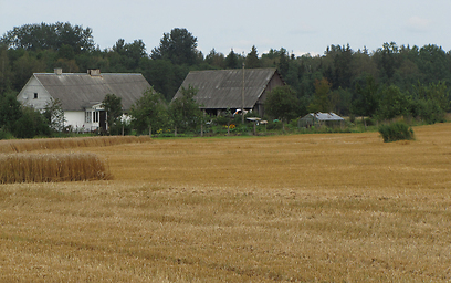 בית חווה בדרך מגבול לטביה לעיר טרטו באסטוניה (צילום: איילת נעמן- חברת אופקים) (צילום: איילת נעמן- חברת אופקים)