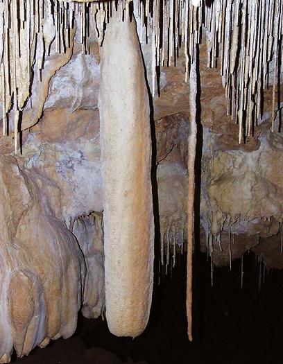 מערות רבות טרם התגלו. מערת כרם זיתים בגליל (צילומים: באדיבות טבע הדברים) (צילום: באדיבות טבע הדברים) (צילום: באדיבות טבע הדברים)