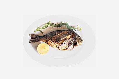מנת דג בשצ'ופק (צילום: ריאן)