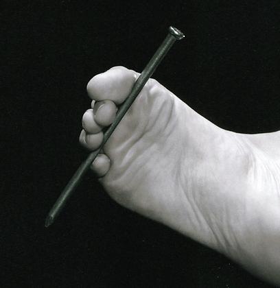 """""""קין"""". כפורסט גאמפ של העת העתיקה (עטיפת הספר) (צילום: עטיפת הספר) (צילום: עטיפת הספר)"""