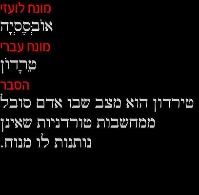 הסברים עבריים למונחים לועזיים. ומה ס. יזהר היה אומר על זה (צילום: האקדמיה ללשון) (צילום: האקדמיה ללשון)