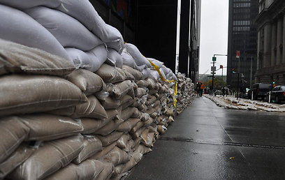 מתגוננים בניו יורק (צילום: אלי חמרי ) (צילום: אלי חמרי )