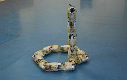 """רובוט שפותח בהשראת מבנה הגוף והתנועה של נחשים (צילום: ד""""ר אלון וולף, המעבדה לביורובוטיקה וביומכניקה, טכניון)"""