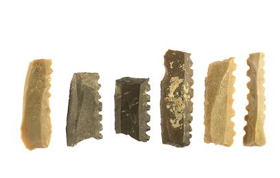 כלי הצור שנחשפו במהלך החפירה (צילום: קלרה עמית, רשות העתיקות) (צילום: קלרה עמית, רשות העתיקות)