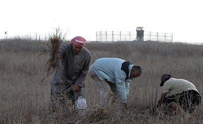 חקלאים פלסטינים, ליד הגדר (צילום: AFP) (צילום: AFP)