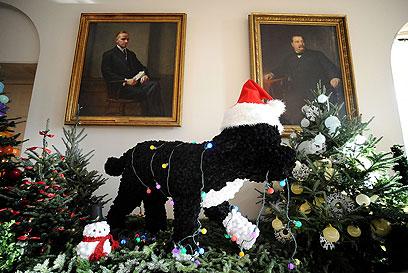 קישוט בבית הלבן בדמות הכלב הנשיאותי בו (צילום: MCT) (צילום: MCT)
