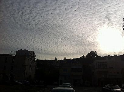 ענני חורף בחיפה  (צילום:  חנה דן) (צילום:  חנה דן)