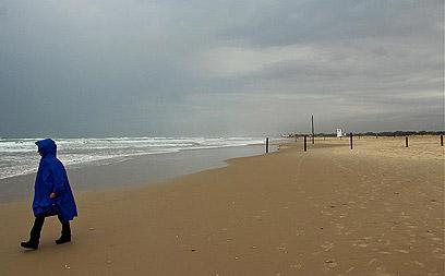 הים כיסה חלק מחוף בית ינאי  (צילום: לאה שרמן -קיש) (צילום: לאה שרמן -קיש)