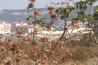 שכונת רמת בית שמש. בקרוב עוד דירות (צילום: סטודיו אדי בוי) (צילום: סטודיו אדי בוי)