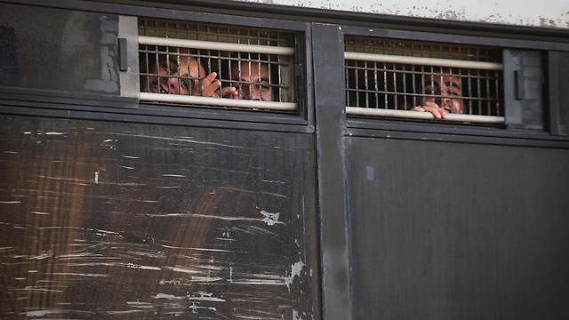 ארכיון. כלא דמון בכרמל (צילום: אבישג שאר-ישוב) (צילום: אבישג שאר-ישוב)