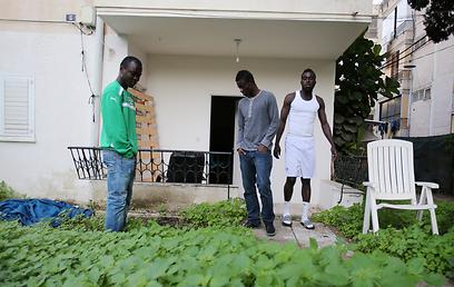 """הזרים של הפועל כפ""""ס מחוץ לדירה (צילום: ראובן שוורץ) (צילום: ראובן שוורץ)"""