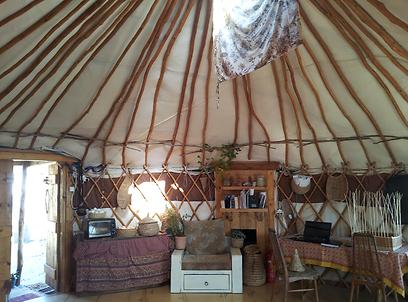 כלי בית שנקלעו מסנסנים באוהל המונגולי של שרי חברוני (צילום: זיו ריינשטיין) (צילום: זיו ריינשטיין)
