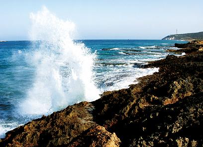 מפרצונים ורכסי כורכר שמשתנים. קו החוף הצפ'-מע' (צילום: יניב אלון, טבע הדברים) (צילום: יניב אלון, טבע הדברים)