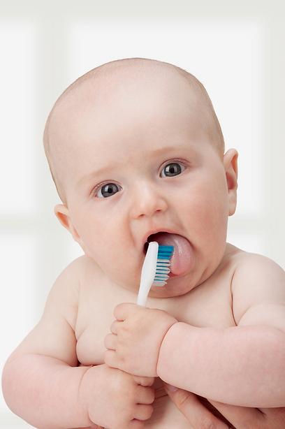 כדאי להתחיל להרגיל את הילדים לצחצח כבר בשן הראשונה (צילום: shutterstock) (צילום: shutterstock)