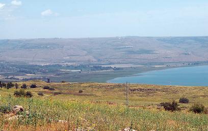 השטח שממזרח לגשר אריק, שהתייבש ובעבר היה מקום למרעה לפרות (צילום: אודי רן, טבע הדברים) (צילום: אודי רן, טבע הדברים)