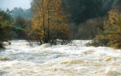 """הירדן. לא נחשב לנהר בקנה מידה אמיתי, אך מסוכן לשייטי """"מים לבנים"""" (צילום: אודי רן, טבע הדברים) (צילום: אודי רן, טבע הדברים)"""