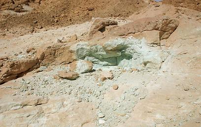מחשוף נחושת מיני רבים, הנקובים בהר אמיר (צילום: אודי רן) (צילום: אודי רן)
