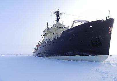 """מי אמר שאי אפשר לשוט בקרח? """"סמפו"""" בפעולה (צילום: זיו ריינשטיין) (צילום: זיו ריינשטיין)"""